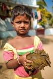 印第安女孩 库存图片
