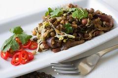 印第安扁豆沙拉 库存照片