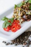 印第安扁豆沙拉 免版税库存照片