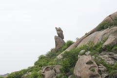 印第安河 免版税库存照片