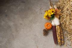 印第安玉米秋天背景 库存图片