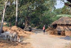 印第安生活村庄 图库摄影