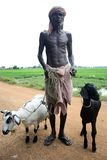 印第安生活村庄 库存照片