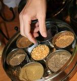 印第安香料盘 免版税库存照片