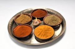 印第安香料 免版税库存图片