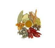 印第安香料 库存图片