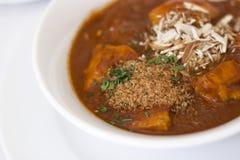 印第安Korma咖喱 库存照片