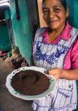 危地马拉咖啡农夫的妻子用碾碎的咖啡 免版税库存图片