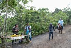 危地马拉- 2017年11月10日:在途中的地方果子商店对帕卡亚火山火山在危地马拉 马服务在背景中 免版税库存图片
