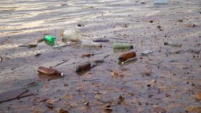 危机生态学环境照片污染 河在洪水以后运载垃圾, Uzhgorod,乌克兰 股票视频