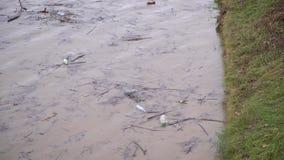危机生态学环境照片污染 河在洪水以后运载垃圾, Uzhgorod,乌克兰 股票录像