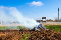 危机生态学环境照片污染 免版税图库摄影