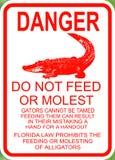 危险不喂养鳄鱼 图库摄影