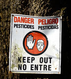 危险杀虫剂标志正方形 免版税库存照片