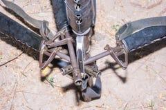 危险枪M-16军用的武器 库存图片