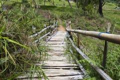 危险桥梁在苏拉威西岛 免版税库存照片