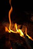 危险火吞食的木头-森林火灾 免版税库存照片