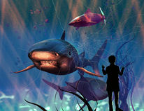 危险鲨鱼 免版税库存照片