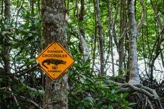 危险鳄鱼与美洲红树的没有游泳标志在背景中 免版税库存照片