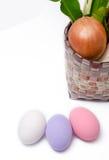 即新鲜蔬菜未加工的红萝卜,葱,被盐溶的萝卜在篮子和 库存图片