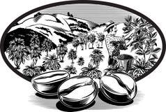 卵形框架,用咖啡豆 免版税库存图片
