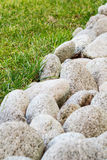 卵形石头品种在庭院里 库存照片