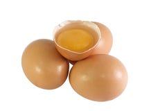 卵黄质 库存照片