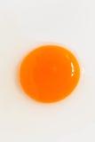 卵黄质 免版税库存照片