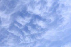 卷云背景在蓝天下 库存照片