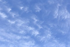 卷云背景在蓝天下 免版税库存图片