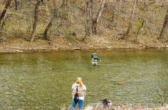 卷在从罗阿诺克河,弗吉尼亚,美国的一条鳟鱼的渔夫 图库摄影
