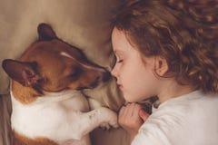 卷曲女孩和起重器罗素狗在夜睡觉 库存图片