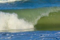 卷曲挥动在海滩 免版税库存图片