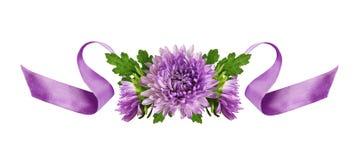 卷曲的淡紫色丝绸丝带和翠菊花的布置 库存图片