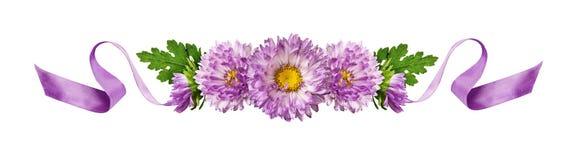 卷曲的紫色丝绸丝带和翠菊花构成 免版税图库摄影