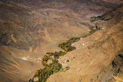 卷曲通过沙漠的绿色绿洲 库存图片
