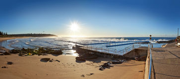 卷毛卷毛海滩悉尼澳大利亚 库存照片