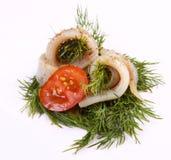 卷用鲱鱼 在pertse的鲱鱼 esklyuziv盘ryby 文件毛鳞鱼 鲱鱼的保存 库存图片