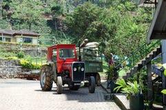 卸载与茶叶子的工作者袋子 免版税库存照片