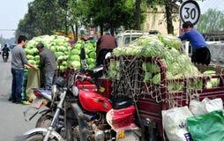 彭州,中国: 农夫用圆白菜 免版税库存照片