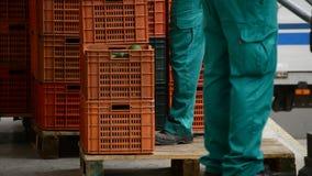 卸载箱鲕梨,产业果子 股票录像
