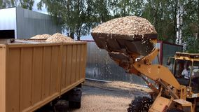 卸载锯木屑的轮子前面装载者入重的翻斗车 在锯木厂的废物 股票视频