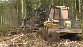 卸载,存贮和处理树干 股票录像