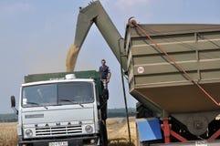 卸载从跳跃者传动机的五谷在truck_2 免版税库存照片