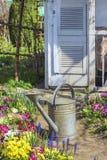 水厂在美丽的春天庭院里 免版税图库摄影