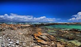 厄加勒斯角国家公园 免版税库存照片