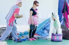 厄梅尔(啤酒舍瓦),以色列-两扮小丑,一个男人和一名妇女和一条白色长卷毛狗在阶段, 2015年7月25日 库存照片