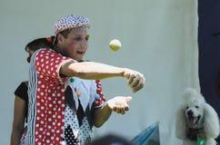 厄梅尔(啤酒舍瓦),以色列-小丑扔在阶段与一条白色长卷毛狗, 25日的7月, 2015年7月网球 免版税库存照片