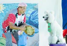 厄梅尔(啤酒舍瓦),以色列-扮小丑与使用与一条白色长卷毛狗, 2015年7月25日的孩子 库存图片