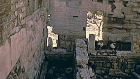 厄瑞克忒翁神庙寺庙希腊 股票视频